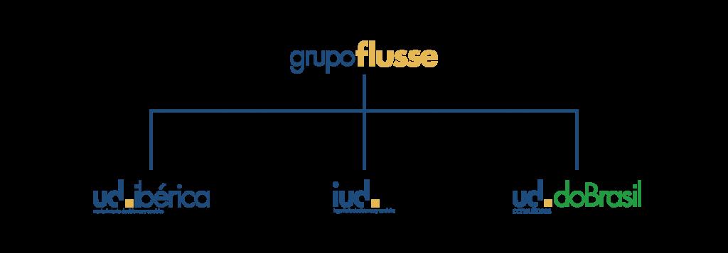 organigrama-grupo-flusse